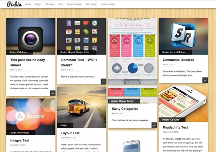Pinbin Grid Based WordPress Theme