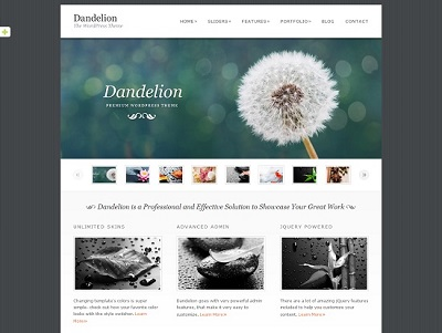 Dandelion Elegant WordPress Theme small