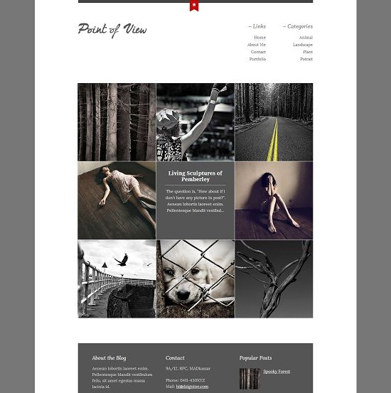 Point of View Clean Photography Blogger Template