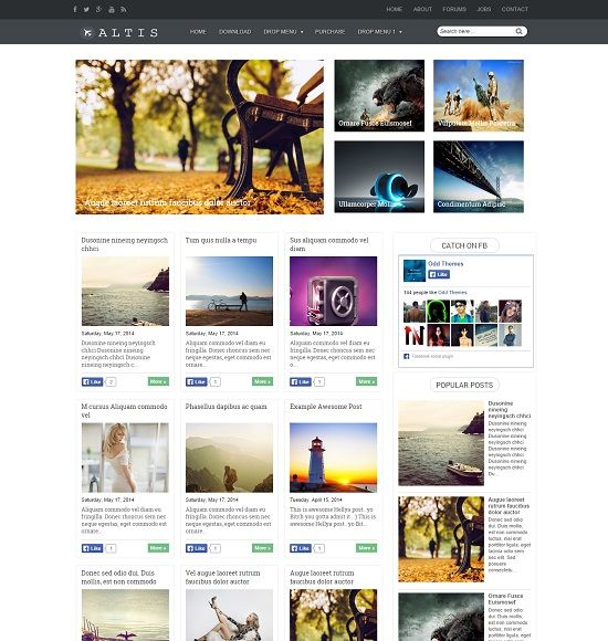 Altis Gallery Blogger Template