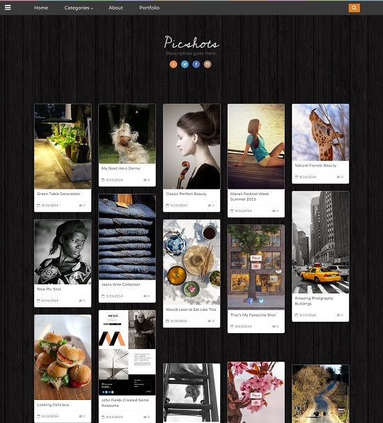 Picshots Picture Blogger Template