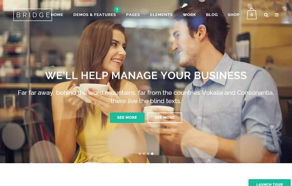 Bridge  Multi Purpose WordPress Theme